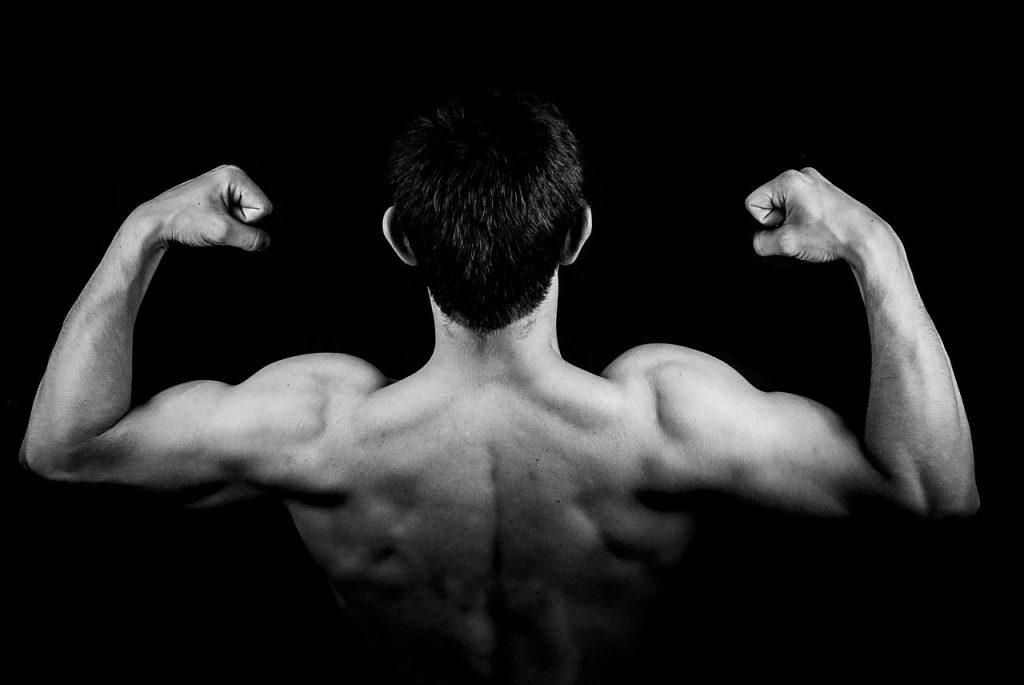 שמירה על בריאות השרירים